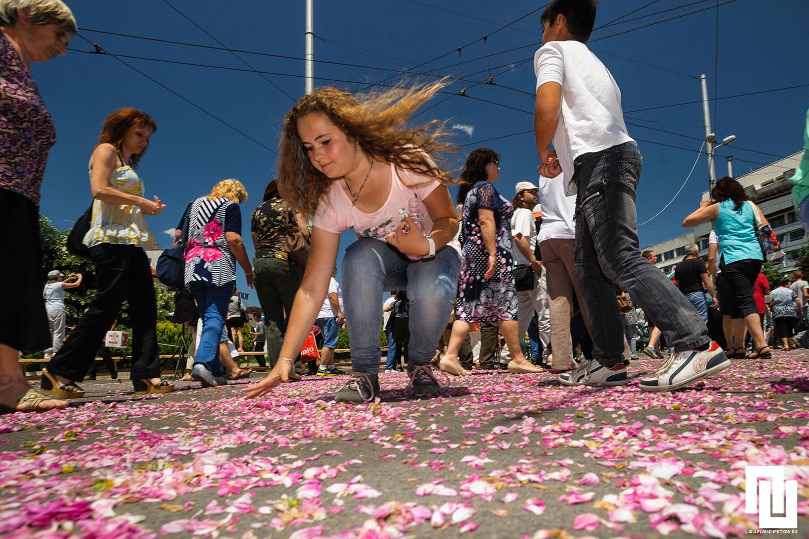 Пътека от розови листа и дете събиращо рози