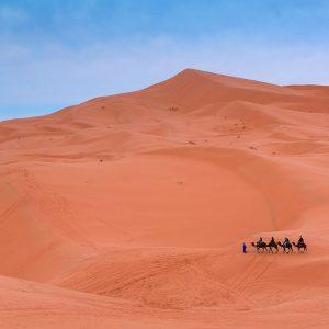 Керван в Сахара